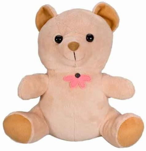 Teddy Bear Hidden Camera